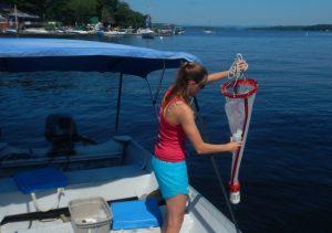 Gloeotrichia monitoring on Long Lake